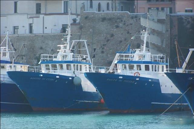 barca-molise-1