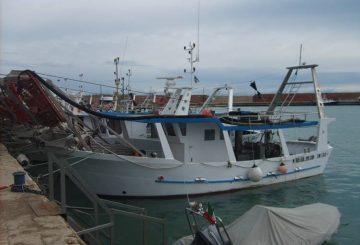 barca-molise-3