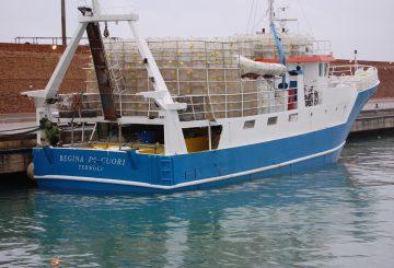 barca-regina-di-cuori-termoli