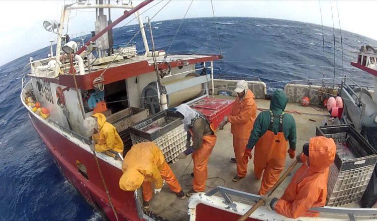 pescatori 1
